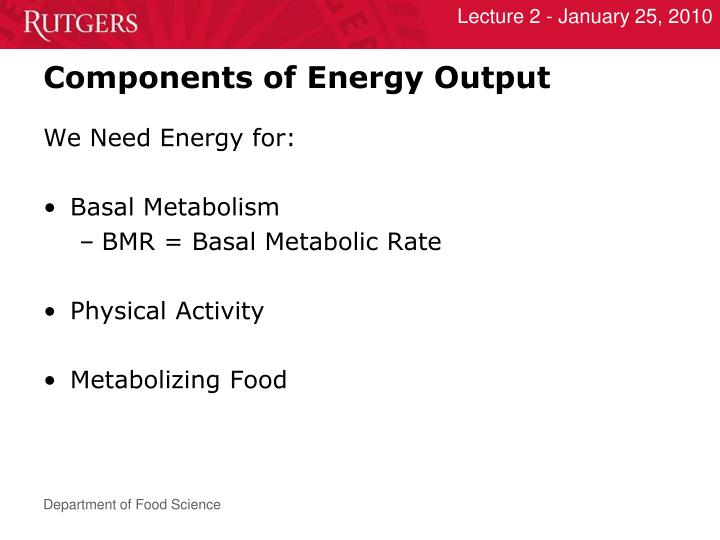 Components of Energy Output