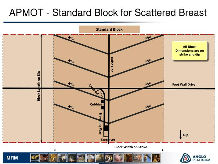 APMOT - Standard Block for Scattered Breast