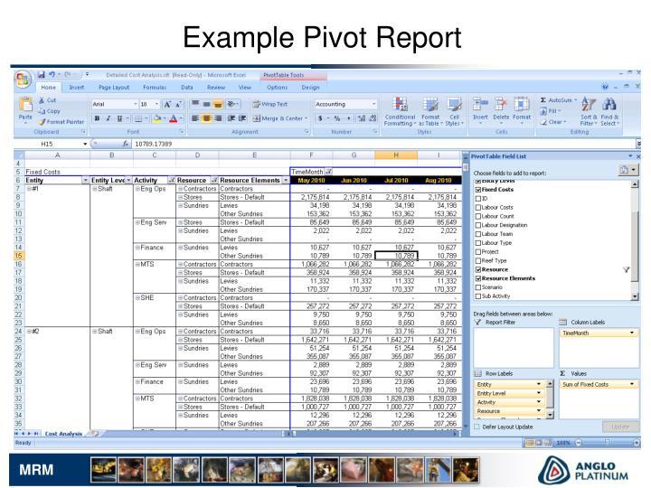 Example Pivot Report
