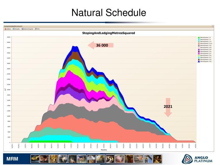 Natural Schedule