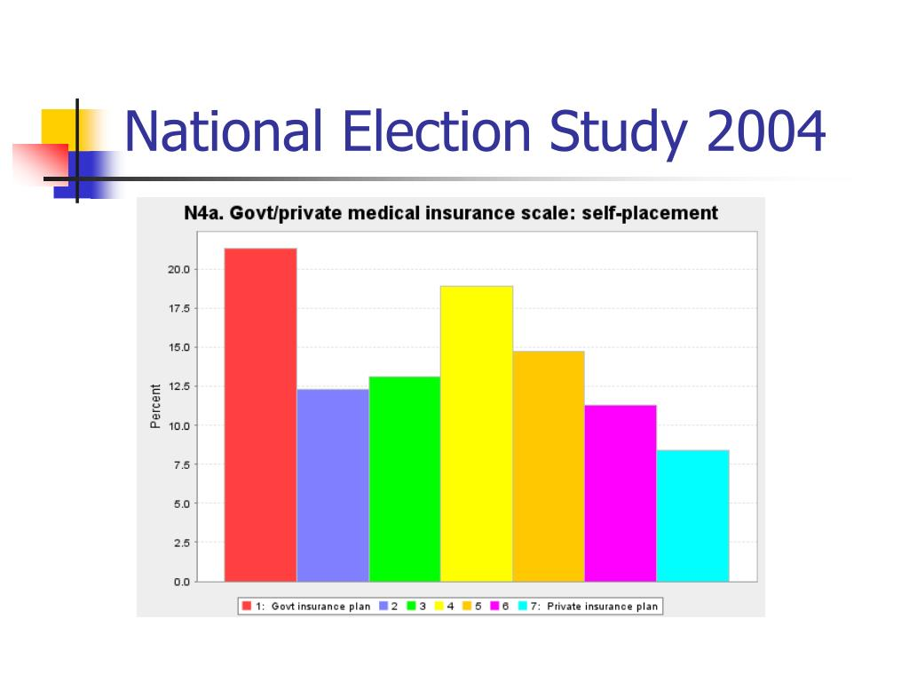National Election Study 2004