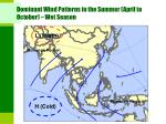dominant wind patterns in the summer april to october wet season