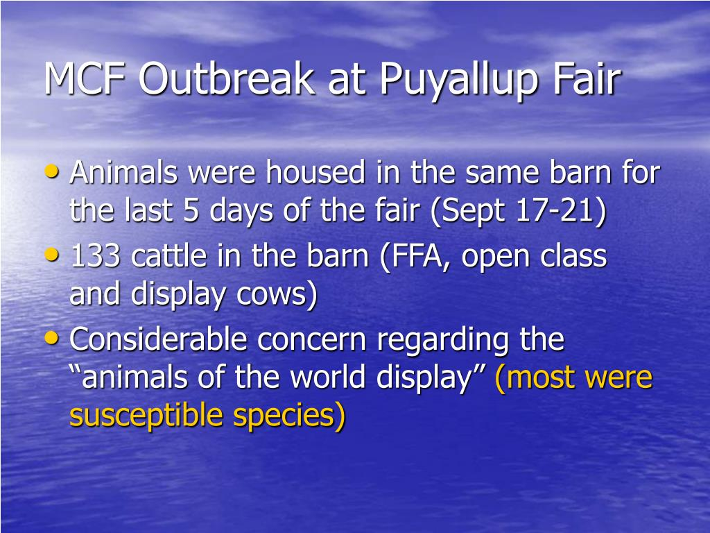 MCF Outbreak at Puyallup Fair