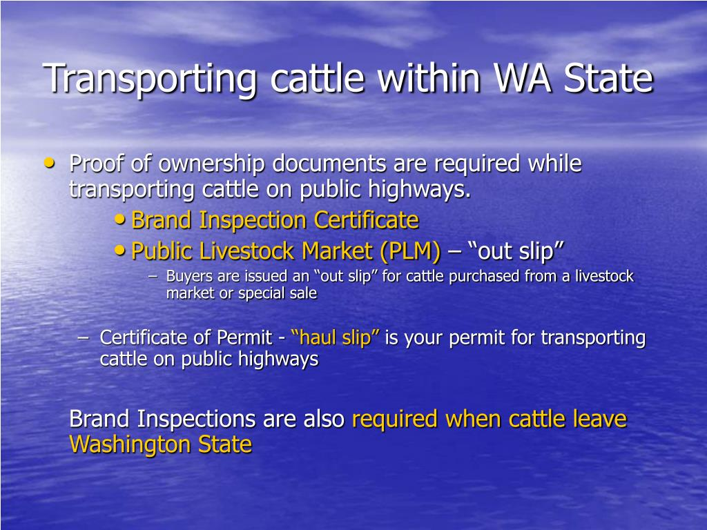 Transporting cattle within WA State