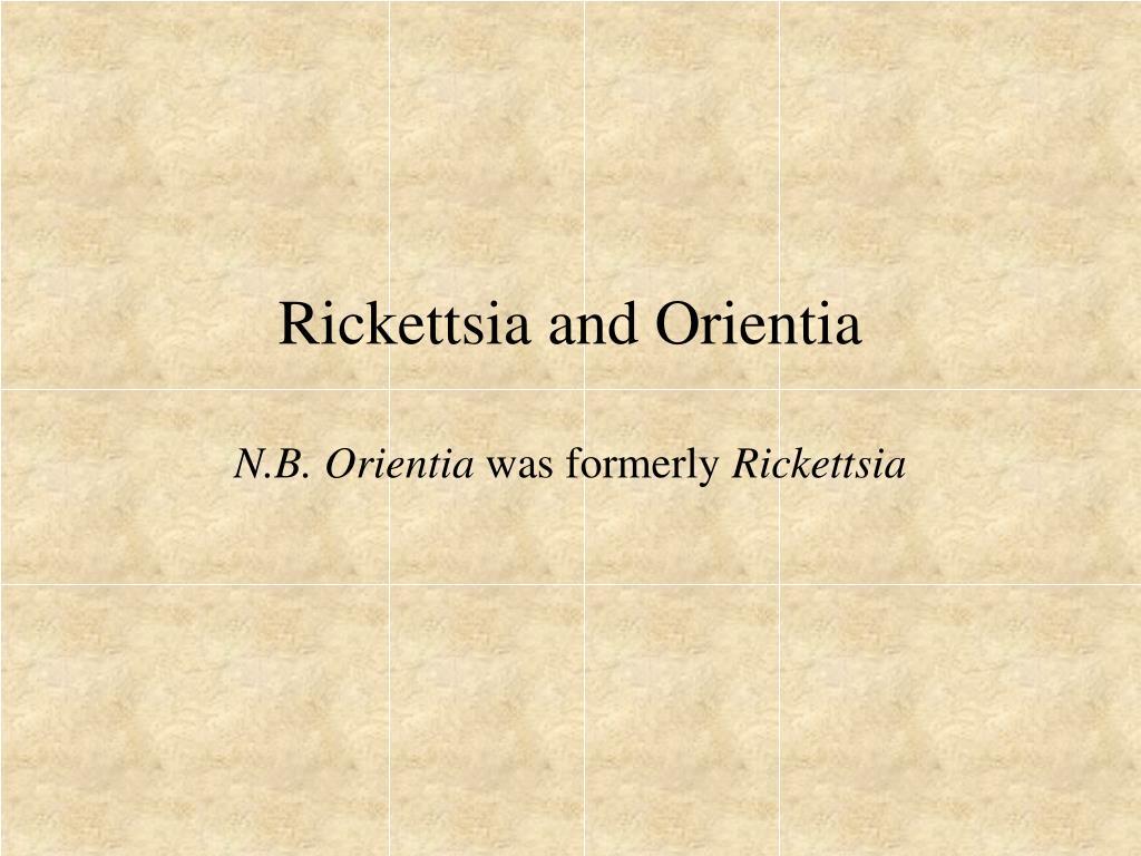 Rickettsia and Orientia