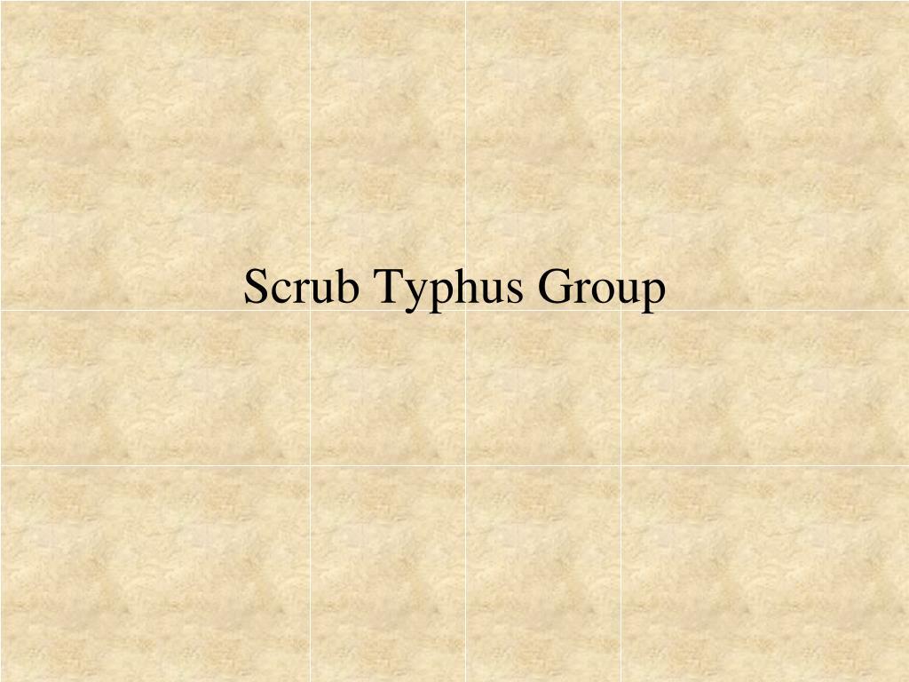 Scrub Typhus Group
