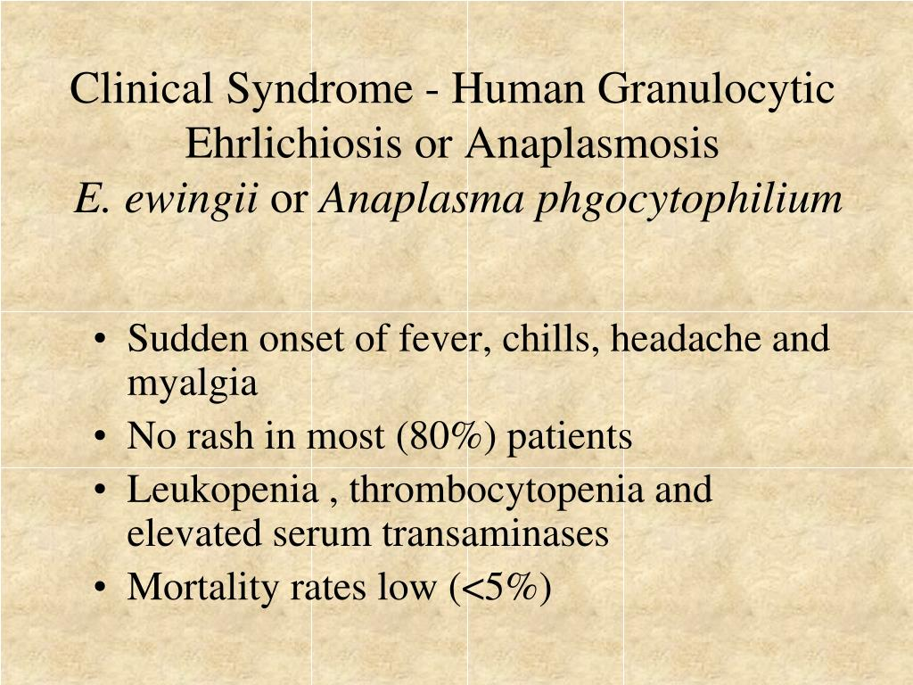 Clinical Syndrome - Human Granulocytic Ehrlichiosis or Anaplasmosis