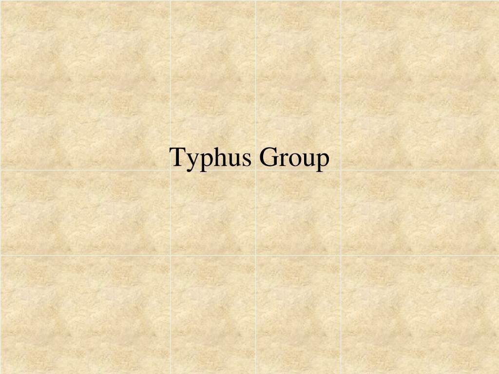 Typhus Group
