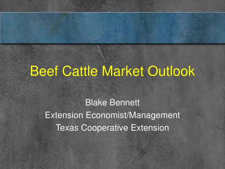 Beef cattle market outlook