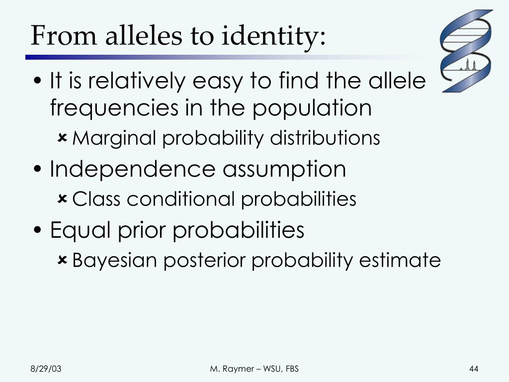 From alleles to identity:
