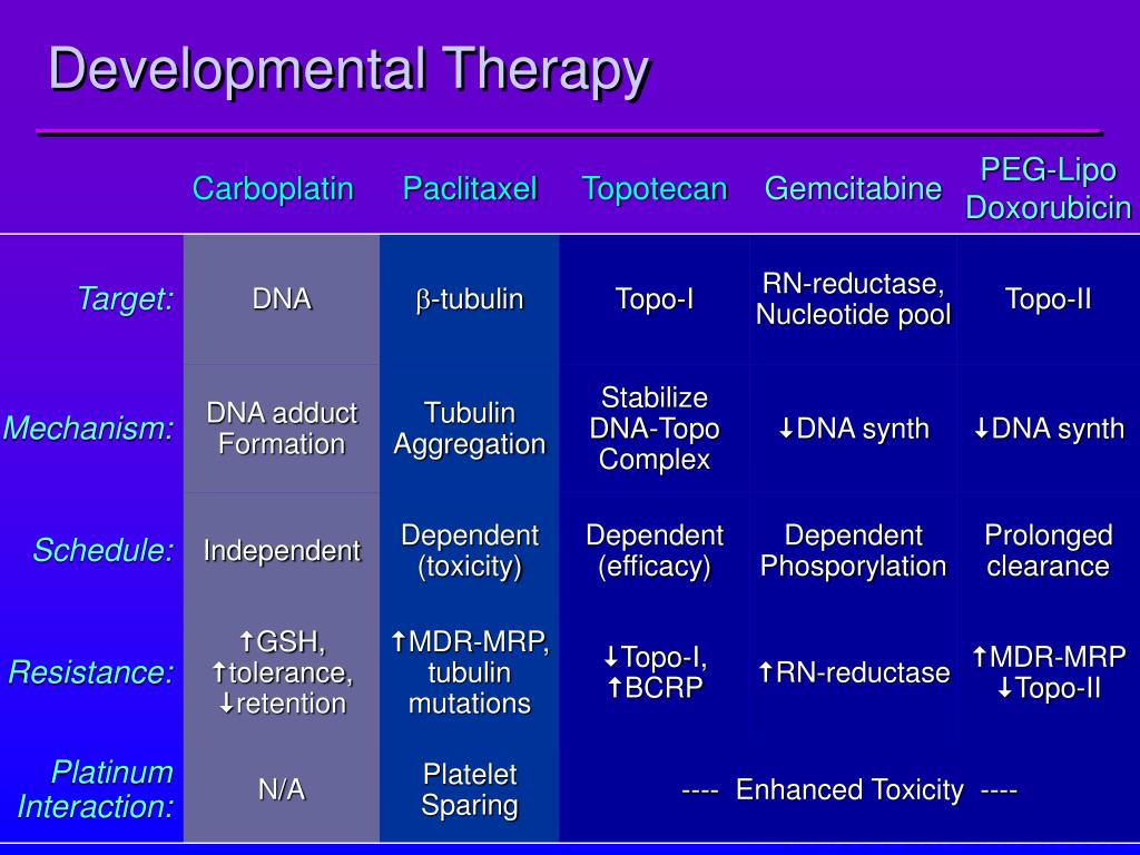 Developmental Therapy
