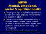 mesh mental emotional social spiritual health