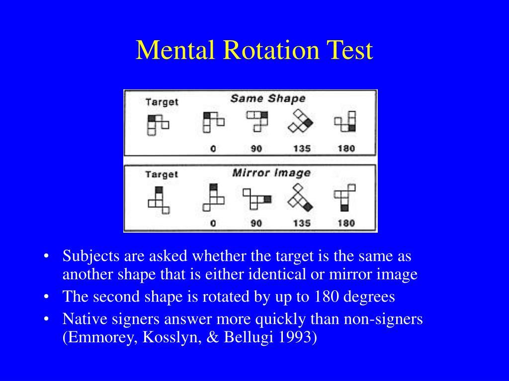 Mental Rotation Test