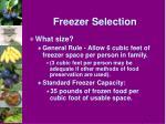freezer selection1