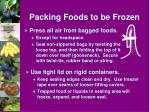 packing foods to be frozen2