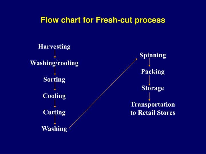 Flow chart for Fresh-cut process
