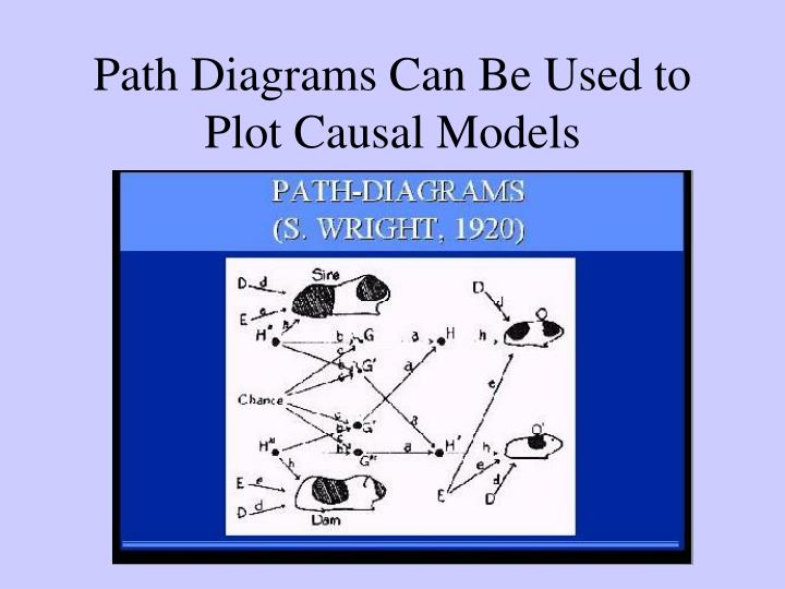Path Diagrams Can Be Used to Plot Causal Models