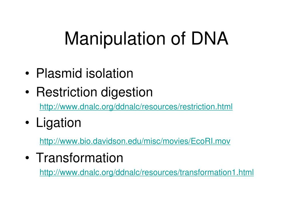 Manipulation of DNA