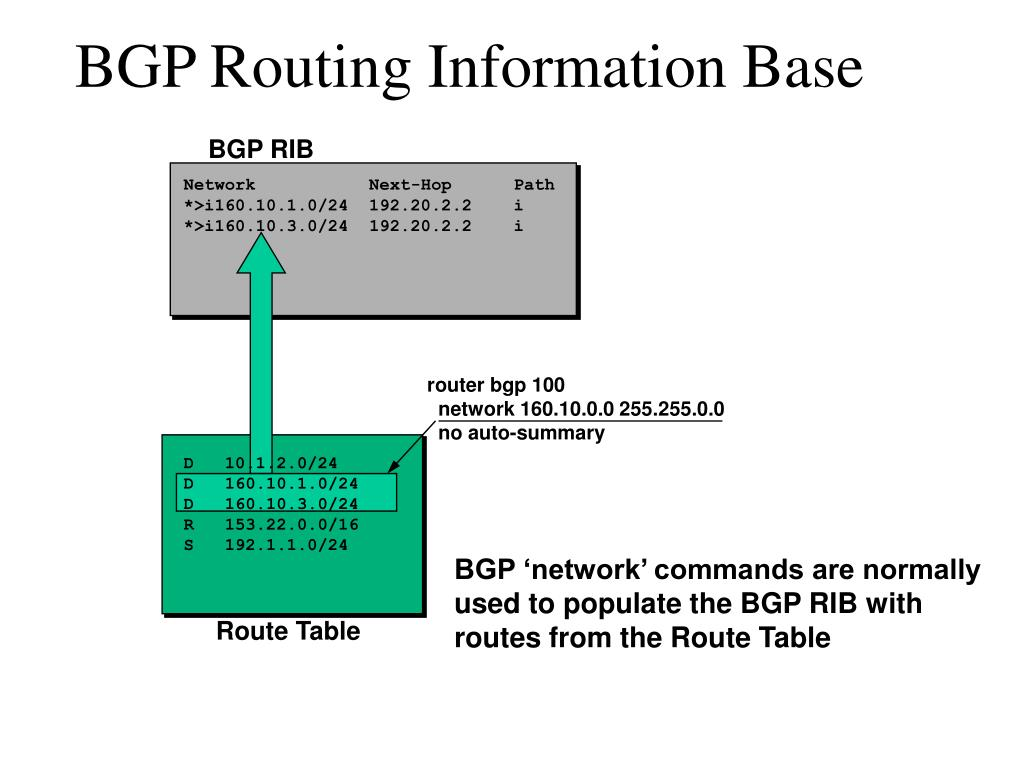 BGP Routing Information Base