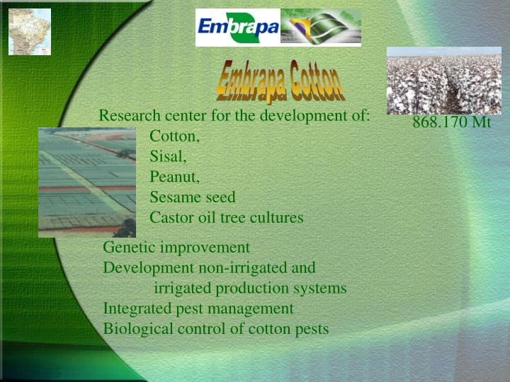 Embrapa Cotton