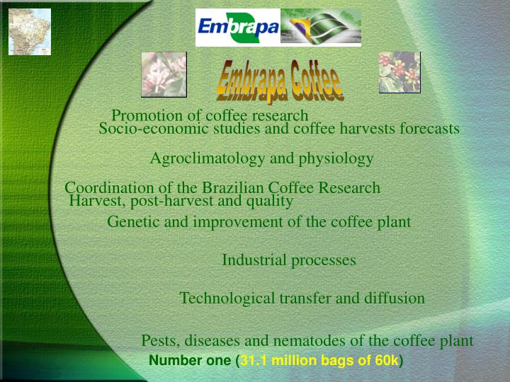 Embrapa Coffee