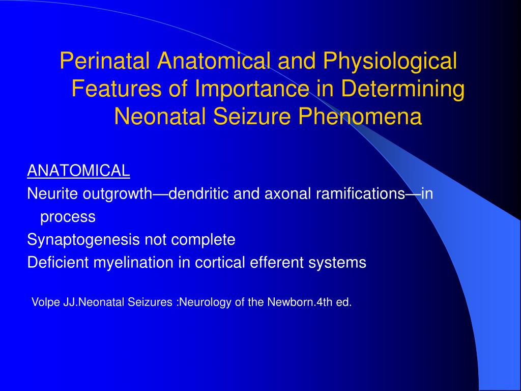 Perinatal Anatomical and Physiological Features of Importance in Determining Neonatal Seizure Phenomena
