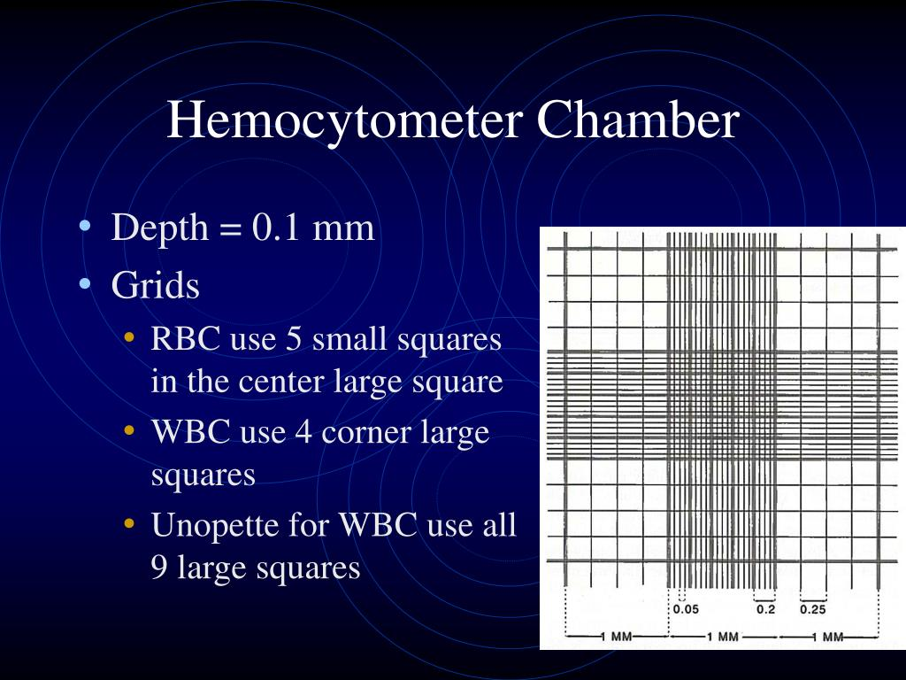 Hemocytometer Chamber
