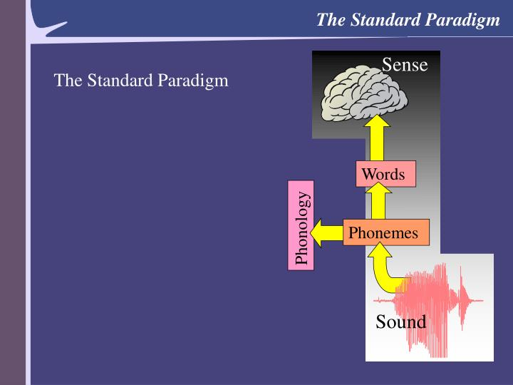The Standard Paradigm