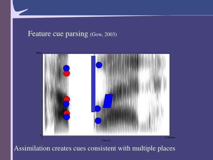 Feature cue parsing