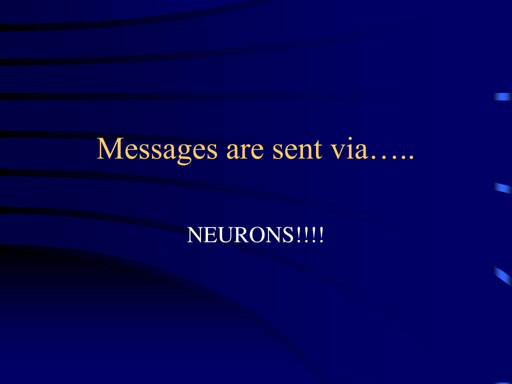 Messages are sent via…..