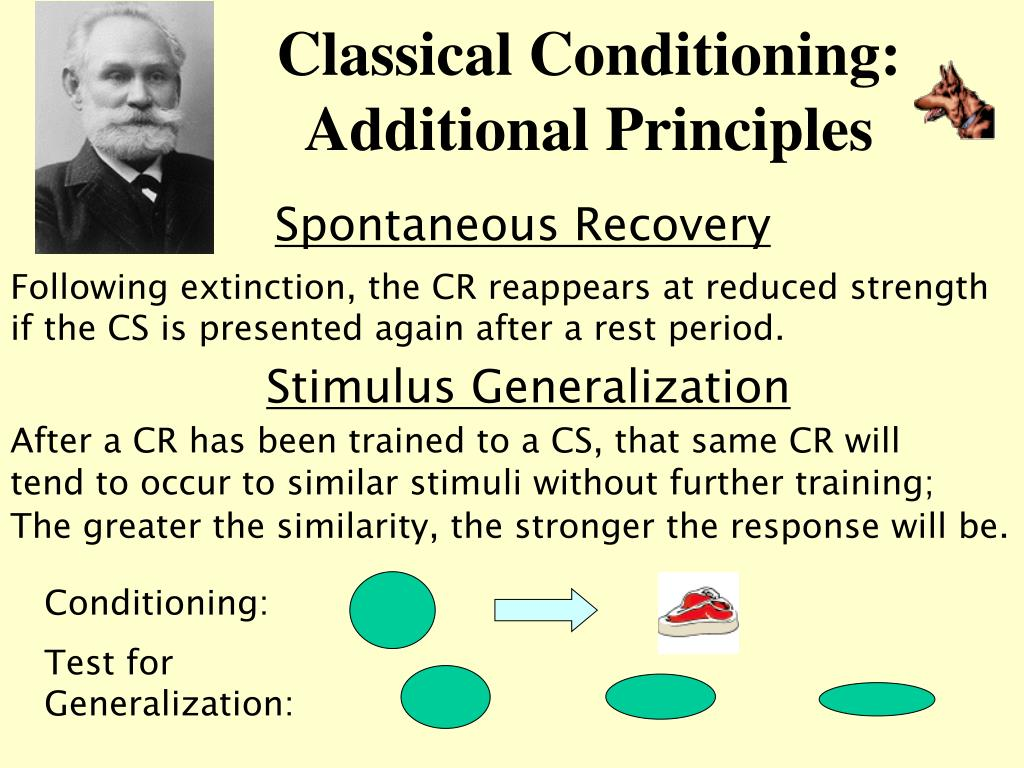 classical conditioning and associative strength Two sorts of associative learning have been well studied: classical conditioning and operant conditioning classical conditioning is well demonstrated by pavlov's famous experiment in which he presented meat powder to a dog, causing it to salivate.
