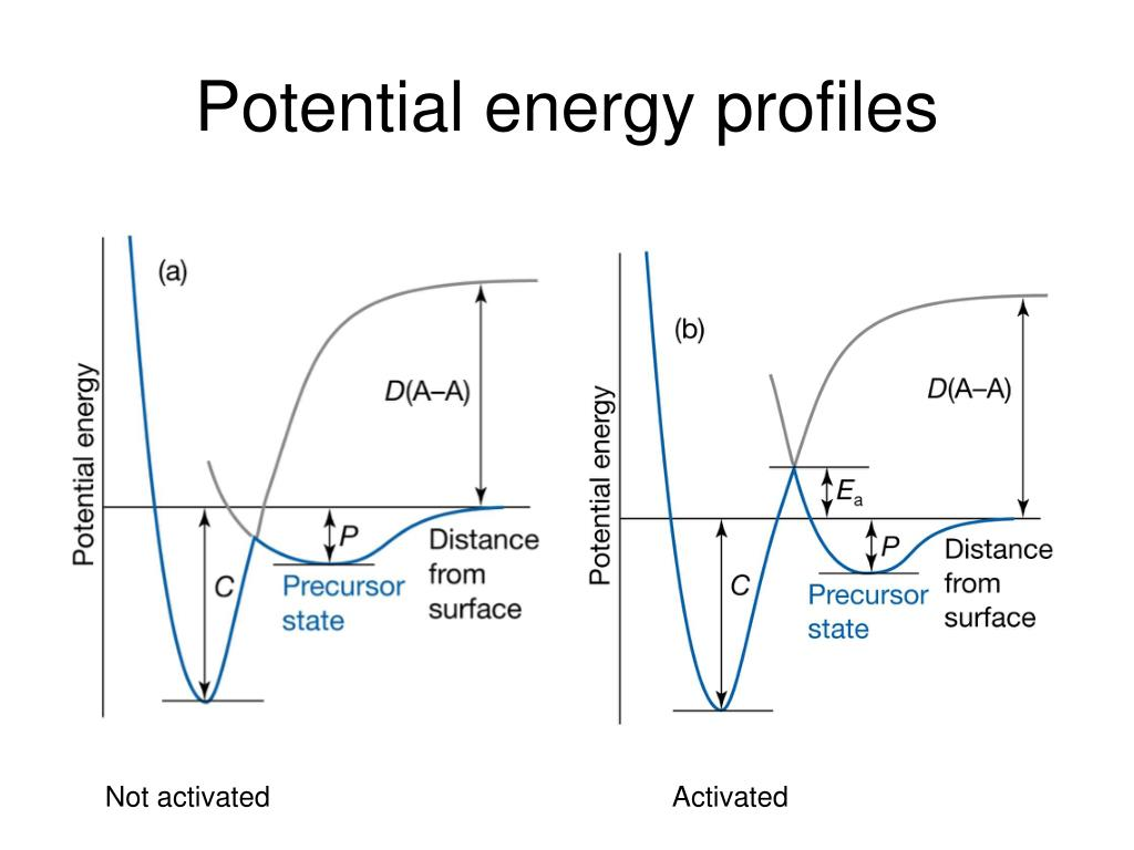 Potential energy profiles