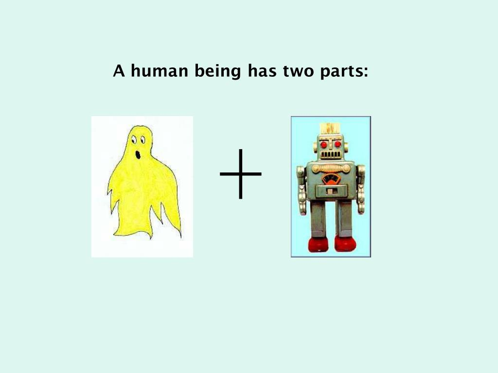 A human being has two parts: