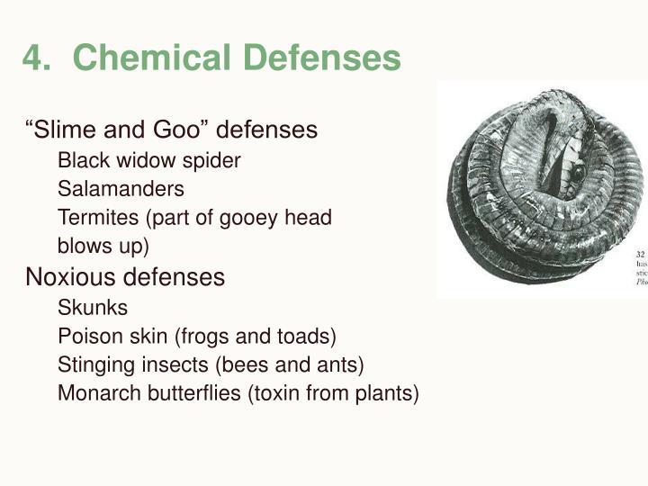 4.  Chemical Defenses
