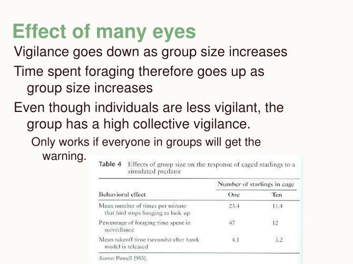 Effect of many eyes