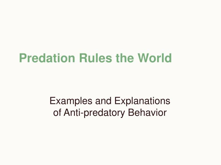 Predation Rules the World