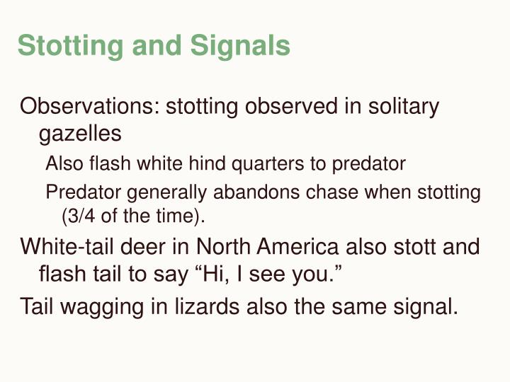 Stotting and Signals