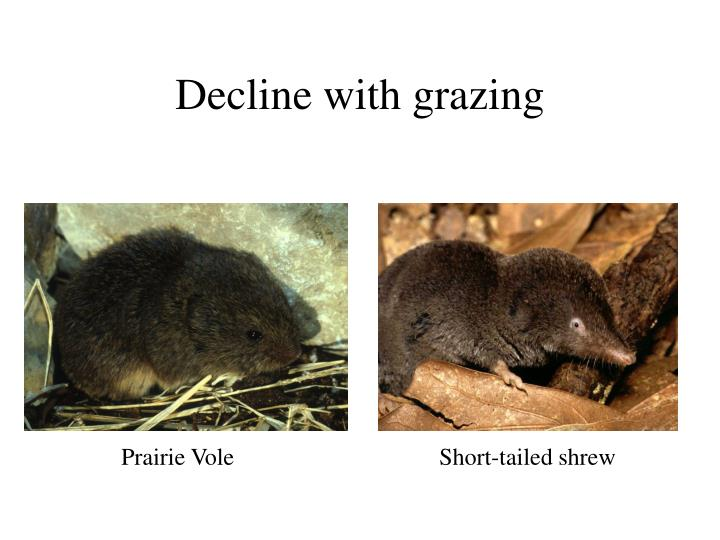 Decline with grazing