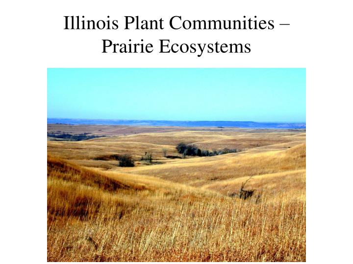 Illinois Plant Communities –