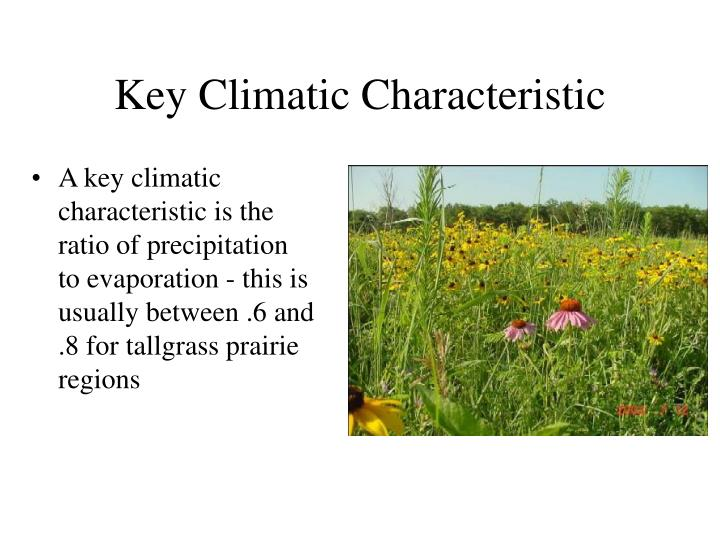 Key Climatic Characteristic