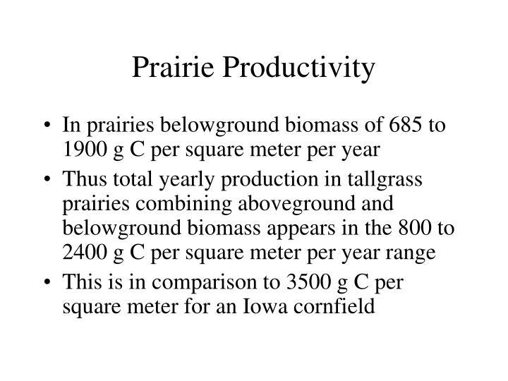 Prairie Productivity