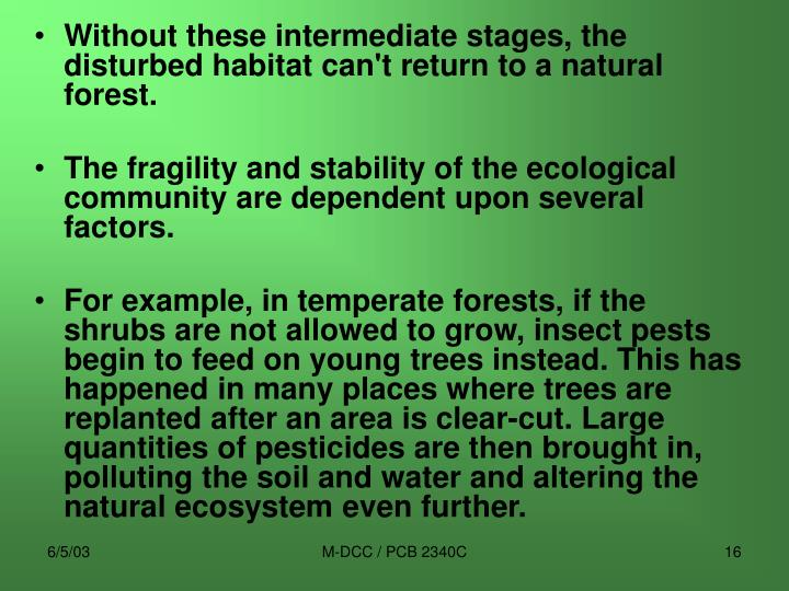 Without these intermediate stages, the disturbed habitat can't return to a natural forest.
