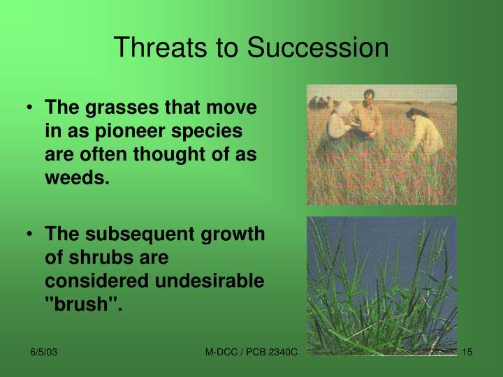 Threats to Succession