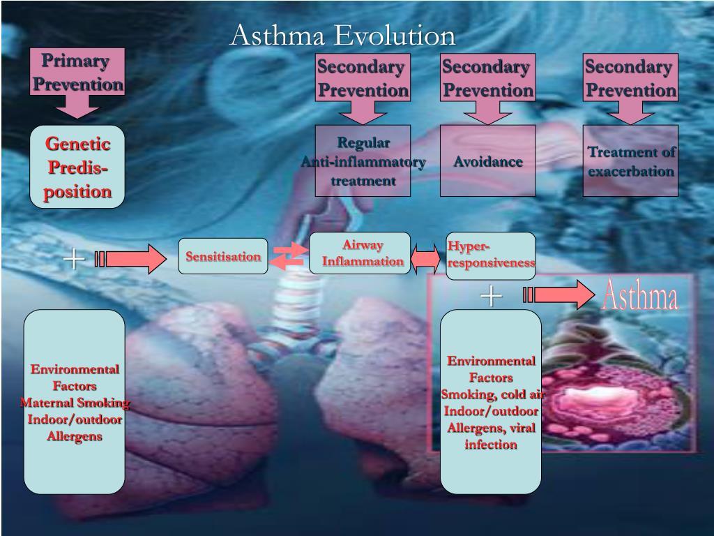 Asthma Evolution