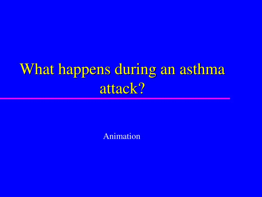 What happens during an asthma attack?
