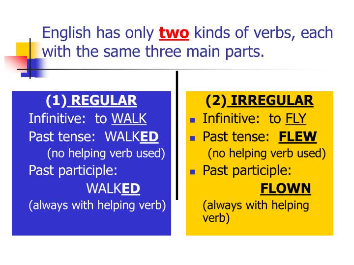 English has only two kinds of verbs each with the same three main parts