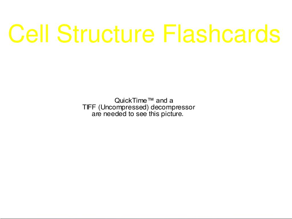Cell Structure Flashcards