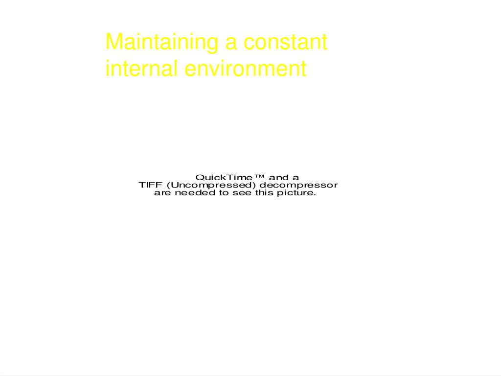 Maintaining a constant
