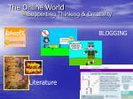 the online world23