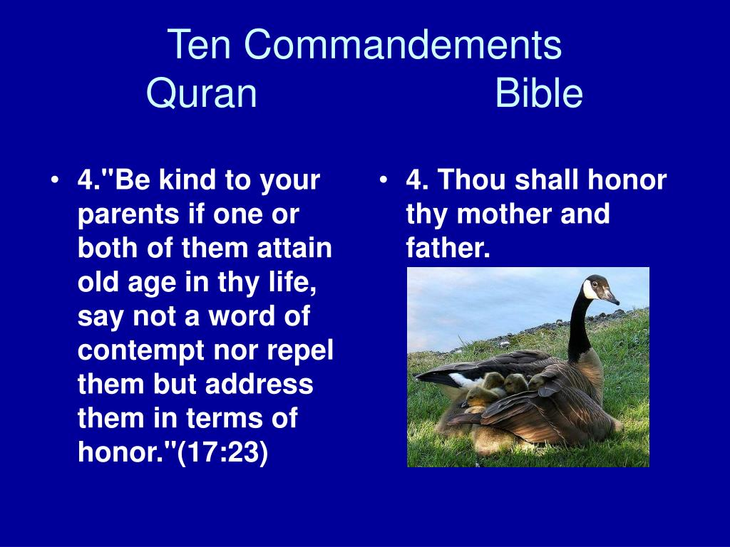 """4.""""Be kind to your parents if one or both of them attain old age in thy life, say not a word of contempt nor repel them but address them in terms of honor.""""(17:23)"""